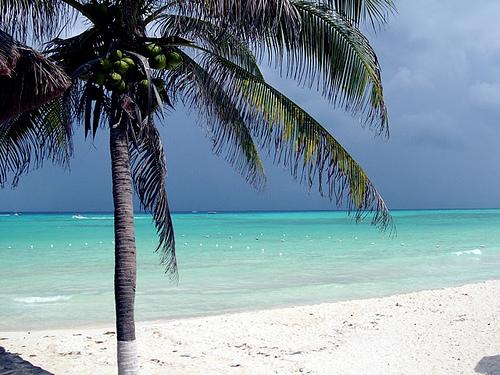 Popular Beach Wedding Destinations In Cozumel Mexico