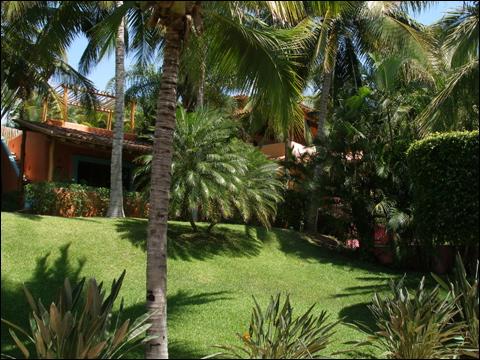Exotic Great Paradise At Las Alamandas Resort In Riviera, Mexico