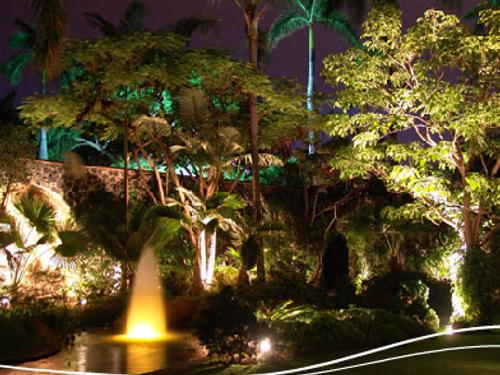 Refreshing Las Mañanitas Hotel