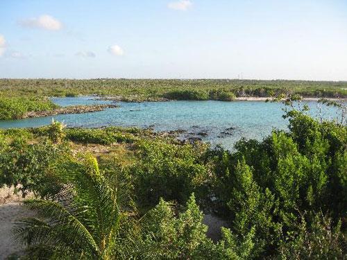 Spectacular View Of Yal Ku Lagoon In Riviera Maya