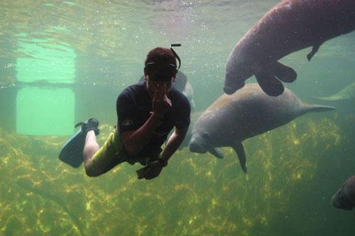 Visiting The Huge & Complete Aquarium In Veracruz City