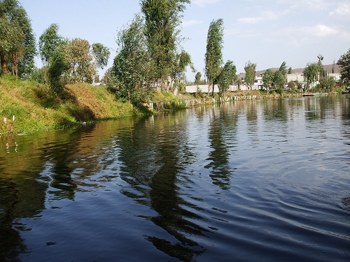 Canals Of Lake Xochimilico