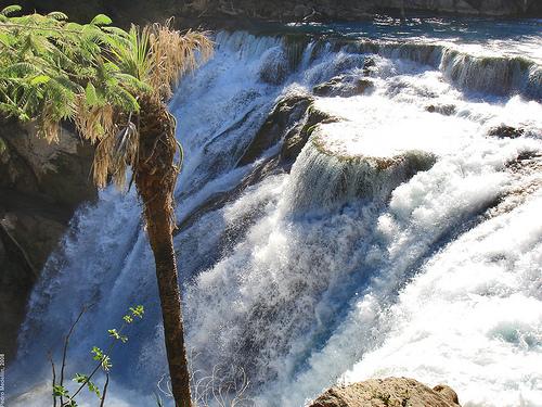 Rapid & Wild Waterfalls Of Cascada Brillante In Huasteca Potosina San Luis Potosi