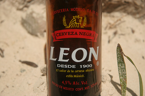 The Yin and Yang of Mexican Beer - Munich Style Leon Cerveza