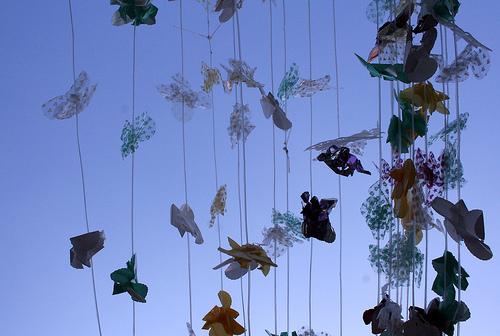 Paper Butterflies at Guanajuato's Hidalgo Market