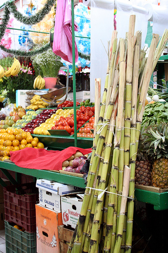 Stalks of fresh sugar cane Produce Stall in Hidalgo Market, Guanajuato   (photo by digiyesica courtesy of Flickr)