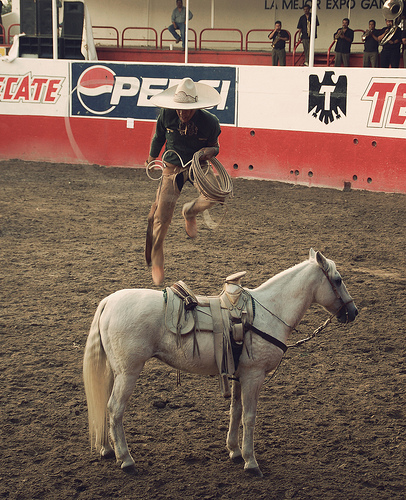 Charros: The Traditional Mexican Cowboy